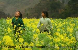 smile_flower_field